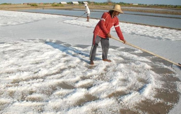 List of selected Salt Importers