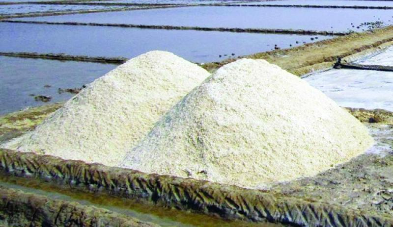 Govt plans to import 5 lakh metric tonnes crude salt